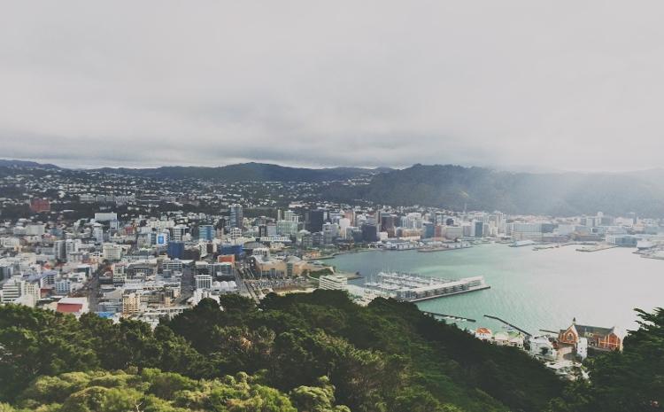 Bucht in Wellington